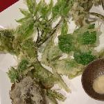 Edible wild plant tempura