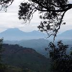The Virunga volcanoes viewed from the campsite.