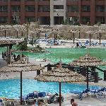 baignade interdite : présence algue (eau verte)