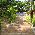 Walkway with pool is the background
