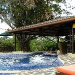 Swim-up bar at the pool
