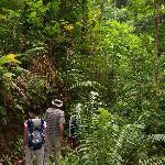 Tucan trail hike
