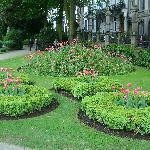 il giardino della piazza