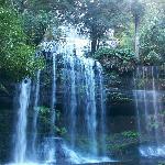 Russel Falls, Mt Field Natl Park