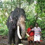 Me Standing with an Elephant