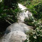 Natural Waterfall at Shaw Gardens