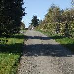 The swish driveway