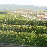 view to the fields