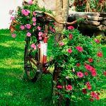 Détail jardin Granary resort