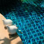 autour de la piscine !