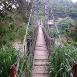 A cable bridge