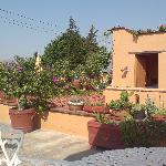 Lovely roof terrace, where you can enjoy home-made mezcal