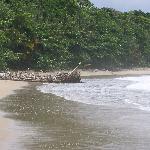 Congo Bongo beach