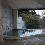 Hakone Yunohana Prince Hotel Foto