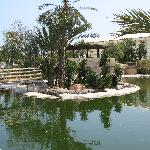 djerba explorer parc aux crocodiles
