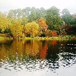 Mountstewart lake