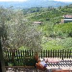 La Fenice-La Bella Vista