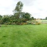 a panorama look at the back garden