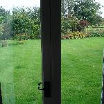 the framed view of the garden from inside the cottage