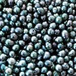 A bowl of black pearls