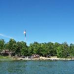 Chippewa pines from the lake