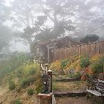 un-retouched digital photo of the Palm House in morning Big Sur fog