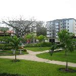 Costa Linda Grounds area
