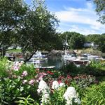 boats & blossoms... a lovely combo !