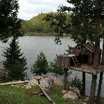 Tree House and Lake