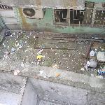 Rubbish Dump outlook
