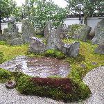 雨に濡れた大きな石が綺麗でした