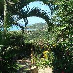 Photo of Tropico de Capricornio