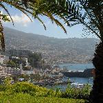 Funchal from Reid's garden