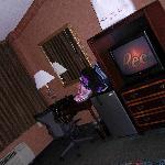 room, tv fridge and desk