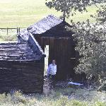 Old cabin on the property