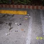 Rodeway Inn Miami Airport