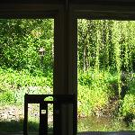 View from the room where we ate breakfast