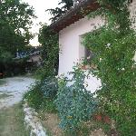 The cottage in Ascoli