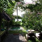 Villla garden pool