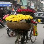 A basketful of fresh flowers