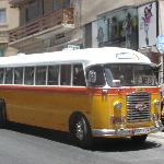 typical Maltese bus