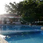 a sunny pool