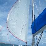 Under Sail to Buck Island