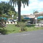 Tropical Shores grounds