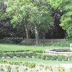 une partie du parc de 6 hectares