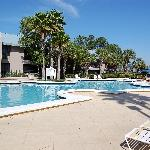 Sabal Palms Pool