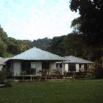 Cabins 1