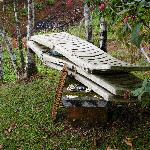 """Junked deck chairs in """"garden"""" area"""