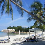 Beach at Samui Paradise