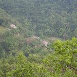 Borgo Chiapporato